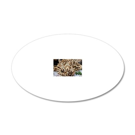 Horseradish roots 20x12 Oval Wall Decal