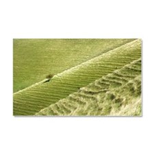 Egardon hill, soil creep Car Magnet 20 x 12