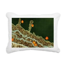 Hepatitis C viruses, TEM Rectangular Canvas Pillow