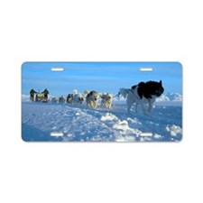 Dogsledge, Northern Greenla Aluminum License Plate