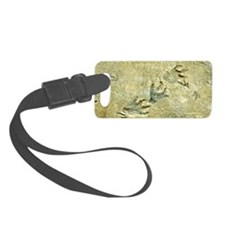 Dinosaur footprint fossils Luggage Tag