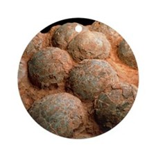 Dinosaur eggs Round Ornament