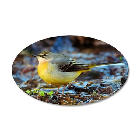 Female grey wagtail 35x21 Oval Wall Decal