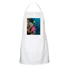 Coral reef, Indonesia Apron