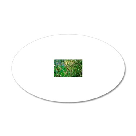 Robin in a tree 20x12 Oval Wall Decal