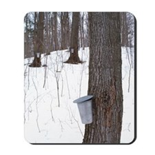 Collecting maple tree sap Mousepad