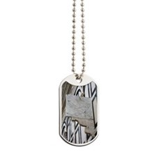Danti's astronomical quadrant Dog Tags