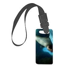 Steller sea lion 4 Luggage Tag