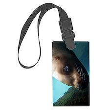 Steller sea lion 6 Luggage Tag