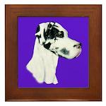 Down Ear Harlequin Great Dane Framed Tile
