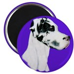 Down Ear Harlequin Great Dane Magnet