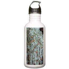 Bell heather (Erica ci Water Bottle