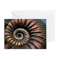 Ammonite fossil Greeting Card