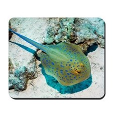 Bluespotted ribbontail ray Mousepad