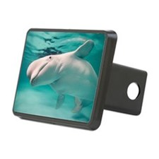 Beluga whale, Delphinapter Hitch Cover