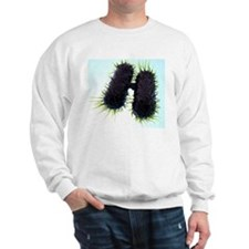 Bacterial conjugation, artwork Sweatshirt