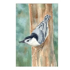 nuthatch Postcards (Package of 8)