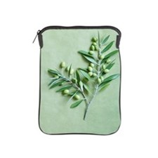 Olive Branch on green background iPad Sleeve
