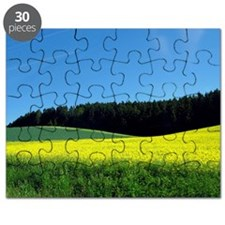 Yellow canola and green fields with curves Puzzle