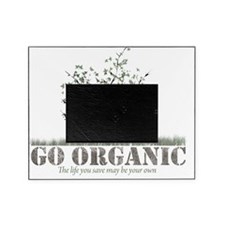 Go Organic Picture Frame