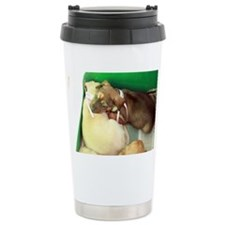 Puppy sleeping on sibling Ceramic Travel Mug