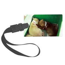 Puppies in a box 2 Luggage Tag