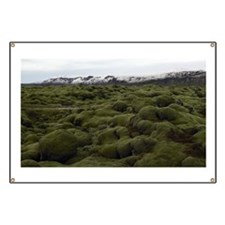 Iceland, moss covered volcanic lava field,  Banner