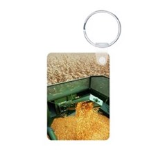 Hopper fills with corn as  Keychains