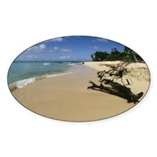 Scenic beach, Buck Island, St. Croi Decal