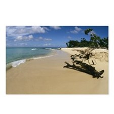 Scenic beach, Buck Island Postcards (Package of 8)