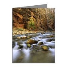 Virgin River ,Zion National  Note Cards (Pk of 10)