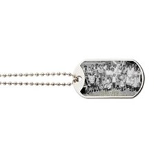 PH1 Dog Tags