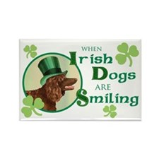 St. Patrick Irish Water Spaniel Rectangle Magnet (