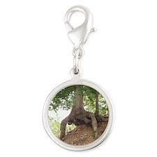 Weird Tree From Tenneesse Silver Round Charm