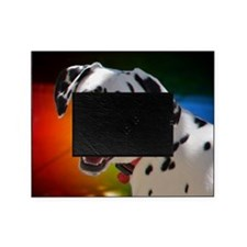 Dalmatian In Color Picture Frame