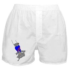 Circus Elephant on the Trapeze Boxer Shorts