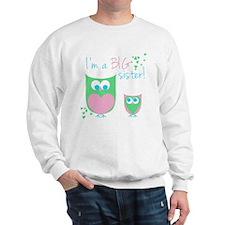 New Big Sister Sweatshirt