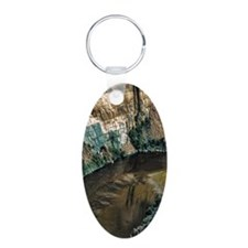 face in the river Keychains