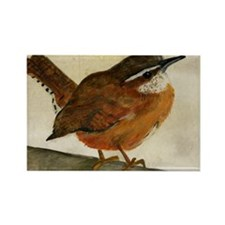Carolina Wren Rectangle Magnet