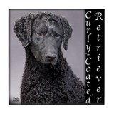 Curly-Coated Retriever Tile Coaster