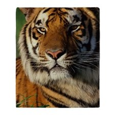 BENGAL TIGER IN DETAIL Throw Blanket