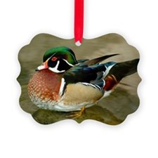 MALLARD DUCK Ornament