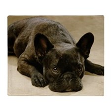 FRENCH BULLDOG LYING DOWN Throw Blanket