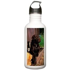 CHOCOLATE LABRADOR RET Water Bottle