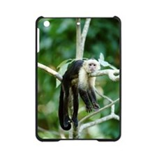 WHITE THROATED CAPUCHIN MONKEY iPad Mini Case