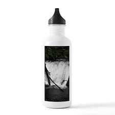 SILVER FALLS Oregon 10 Water Bottle