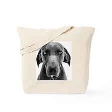 Blue weimaraner dog staring Tote Bag