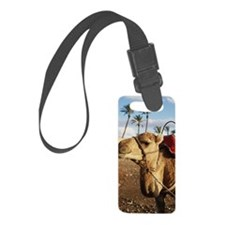 Camel in Morocco Luggage Tag