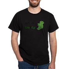 Irish Unity T-Shirt