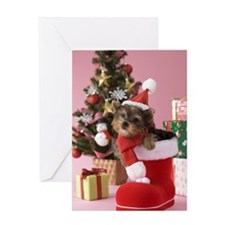 Yorkshire Terrier Puppy and Christma Greeting Card